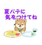 よちよち豆柴 優しい夏(個別スタンプ:26)