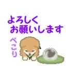 よちよち豆柴 優しい夏(個別スタンプ:35)