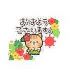 優しさいっぱいのトラネコさん2 (夏)(個別スタンプ:01)