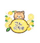 優しさいっぱいのトラネコさん2 (夏)(個別スタンプ:02)