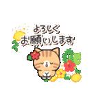 優しさいっぱいのトラネコさん2 (夏)(個別スタンプ:09)