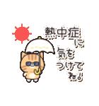 優しさいっぱいのトラネコさん2 (夏)(個別スタンプ:12)