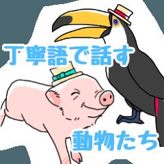 [LINEスタンプ] 丁寧語を話す動物たちの画像(メイン)