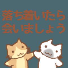 大人の体調を気遣う猫スタンプ 対コロナ