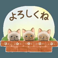 うごく☆猫たちのスタンプ