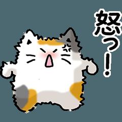 猫っぽい何かの怒りと悲しみと…