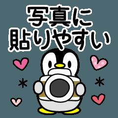 写真に貼りやすい♡ペンギン