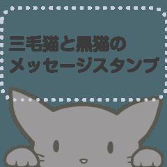 [LINEスタンプ] 三毛猫と黒猫のメッセージスタンプ