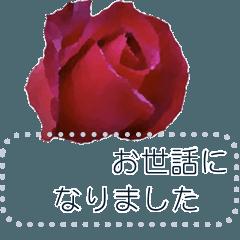 [LINEスタンプ] バラ色のメッセージスタンプ