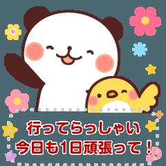 [LINEスタンプ] パンダのぴぃちゃん【自由にメッセージ】