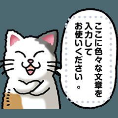 猫メッセージ その1