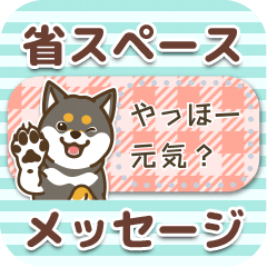 【メッセージ】愛しのわんこ~黒柴~