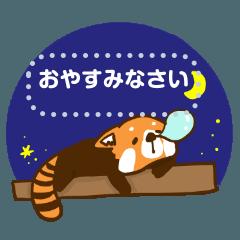 [LINEスタンプ] レッサーパンダからのメッセージ
