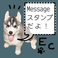 ECのメッセージスタンプ