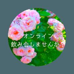 flower3♡コロナに負けないRose薔薇