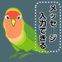 [LINEスタンプ] ラクガキ動物園33 【コザクラインコ3】