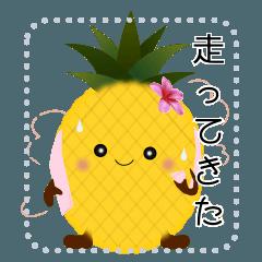 パインちゃんのスマイル&ラン生活 Message