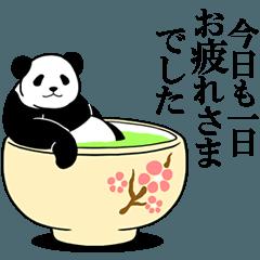 モーレツに動くパンダ★長文で伝える★