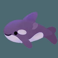 クジラとイルカの日