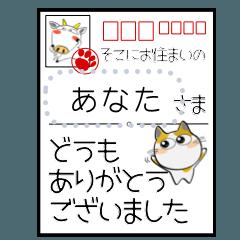 三毛猫のメッセージスタンプ! みーこ10