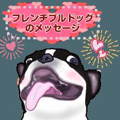 [LINEスタンプ] フレンチブルドッグのメッセージ