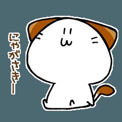 [LINEスタンプ] 長崎弁のかくにゃん
