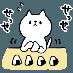 [LINEスタンプ] ねこの日常♪スタンプ (1)