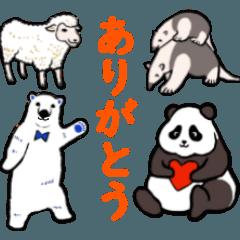 [LINEスタンプ] パンダ、白熊、コアリクイ、羊のスタンプ