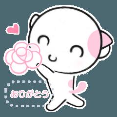 福猫の桜ちゃん 8