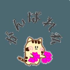 トラ猫のちび1