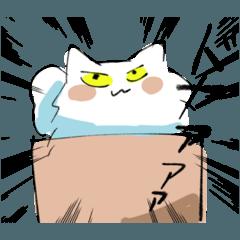 目つきの悪い白猫