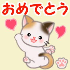 [LINEスタンプ] ちび三毛猫 おめでとうスタンプ