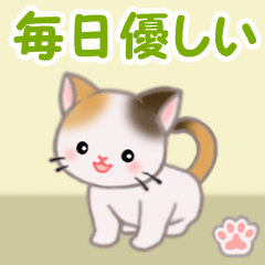 [LINEスタンプ] ちび三毛猫 毎日優しいスタンプ