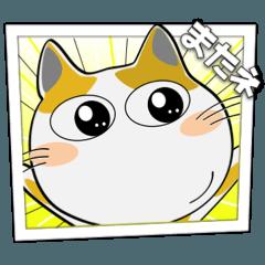 [LINEスタンプ] まんが風でよく使うことば! みーこ11