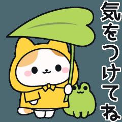 [LINEスタンプ] レインコートを着たネコさん