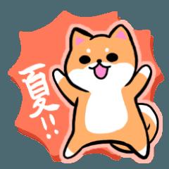 柴犬さんと黒柴さんスタンプ【夏!】