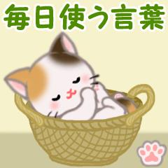 [LINEスタンプ] ちび三毛猫 毎日使う言葉