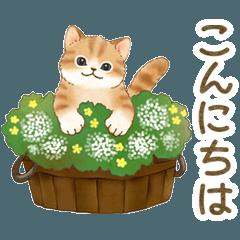 [LINEスタンプ] ともだち☆猫たちのスタンプ2