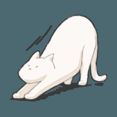 かわいい白い猫のスタンプ