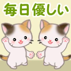 [LINEスタンプ] 三毛猫ツインズ 毎日優しいスタンプ