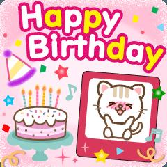 [LINEスタンプ] 大人のためのねこ♥年間イベントと誕生日