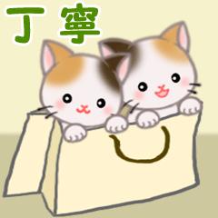 [LINEスタンプ] 三毛猫ツインズひょっこり(丁寧)