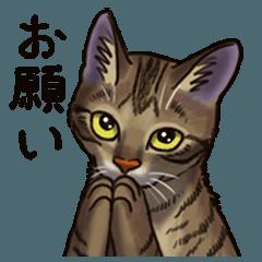 猫スタンプ(キジトラ)