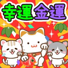 幸運・金運をもたらす招き猫★お祝いと日常