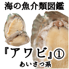 水生生物集『アワビ』ver.1 挨拶系