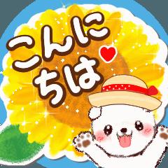 夏わんこ☆敬語