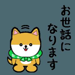 豆いぬ1 (敬語編)