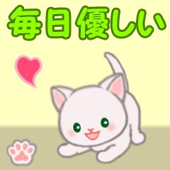 [LINEスタンプ] 赤ちゃん白猫 毎日優しいスタンプ