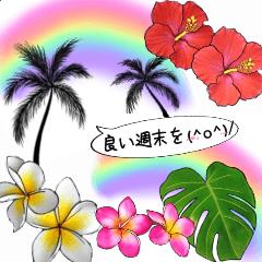 [LINEスタンプ] ❤️親しい人に使えるハワイアンなお花❤️