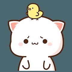 もちもち動く猫ちゃん 8